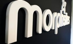 Stand Off Lettering, Wall Mounted Signage & Window Graphics for Morphsites