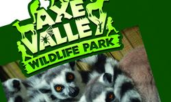 Signage Design for Axe Valley Wildlife Park