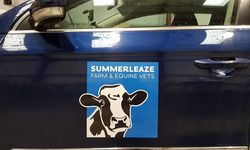 Fleet Vehicle Graphics for Summerleaze Vets