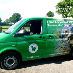 Van Wrapping Ferne Animal Sanctuary