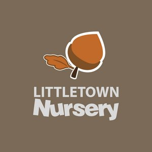 Littletown Primary School Print design